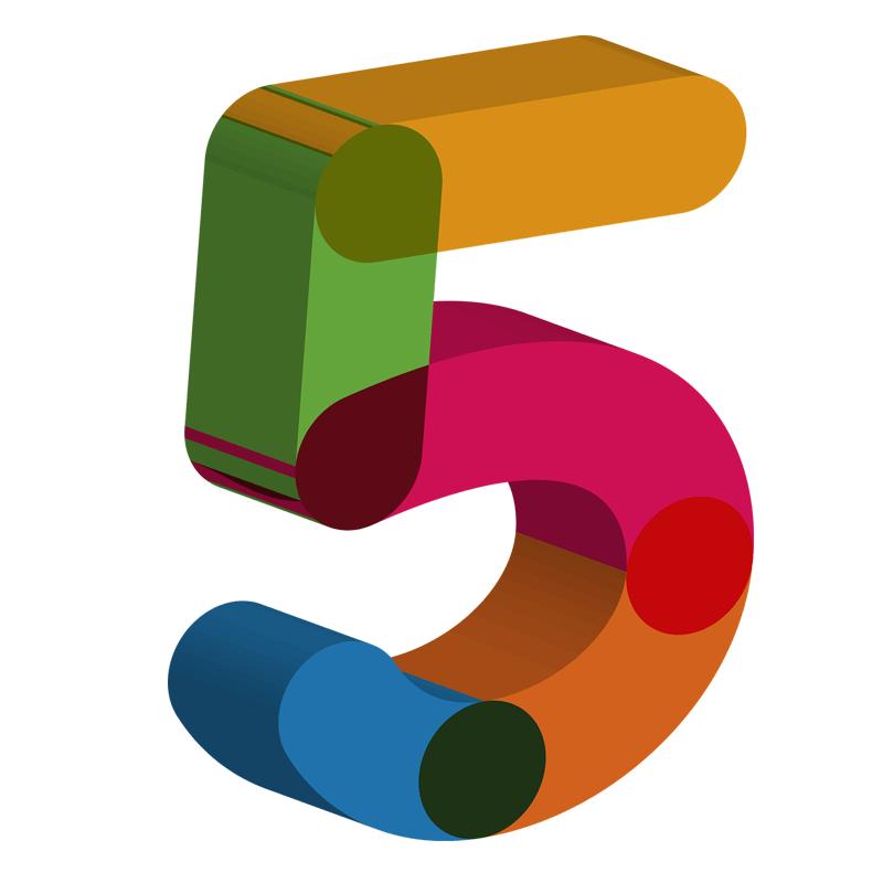 FIVE Types Of Hammock